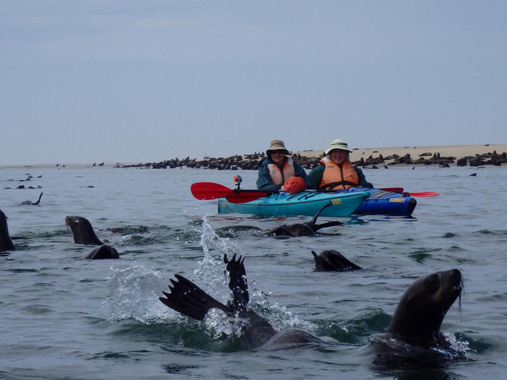 Kayaking 7h45 12h00